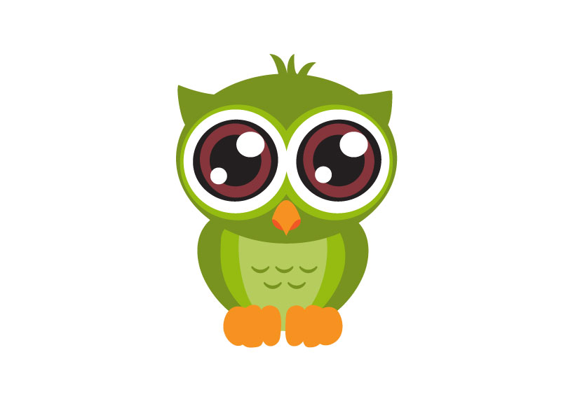 Image of: Saw Whet Judith Labaila Cute Owl
