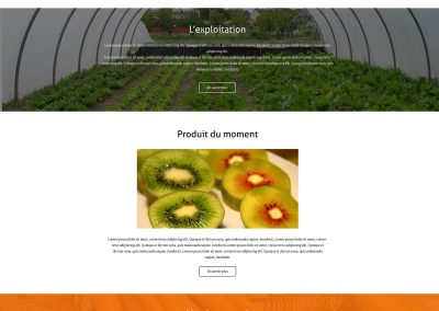 Organic fruit and vegetables merchant online store